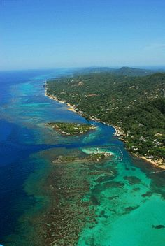Amazing place to snorkel!  Roatan, a small island off the coast of Honduras.