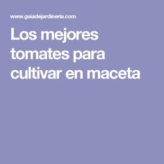Los mejores tomates para cultivar en maceta Festival Looks, Container Gardening, Backyard, Patio, Crafts, Diy, Gardens, Orchards, Grow Tomatoes