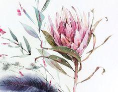 Hydrangea, Tulip, Protea, Orchid Source by kristileekaiser Protea Art, Protea Flower, Watercolor Wallpaper, Watercolor Flowers, Watercolor Paintings, Watercolours, Australian Flowers, Illustration Blume, Plant Drawing