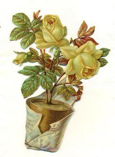large victorian scrap pot  of  roses
