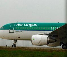 A320-214 Aer Lingus EI-DVH (cn 3345) at Milan Linate Airport