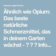 Ähnlich wie Opium: Das beste natürliche Schmerzmittel, das in deinem Garten wächst - ☼ ✿ ☺ Informationen und Inspirationen für ein Bewusstes, Veganes und (F)rohes Leben ☺ ✿ ☼