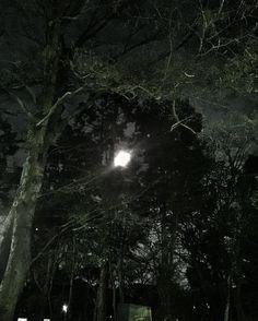 月齢13.34 ほぼ満月 by gajumaru3