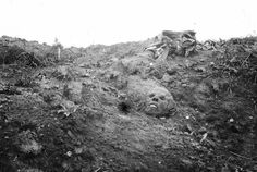 "WW1, 13 sept 1916, bois du Sommet (Somme). ""Legend says that this skull, already mummified, is that of a German soldier."" - Frantz Adam/AFP"