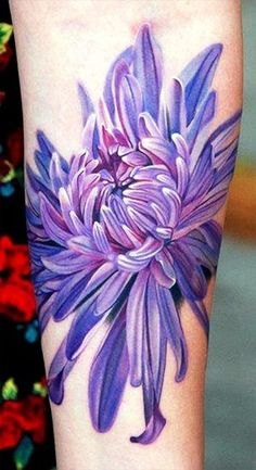 A collection of beautifully curated chrysanthemum tattoo designs just for you. Here we will share the background on Chrysanthemums as well as the meaning of the flower. We will also discuss here the perfect body placement for your chrysanthemum tattoo. Lila Tattoos, Purple Tattoos, Body Art Tattoos, Sleeve Tattoos, Tatoos, Tattoos 2014, Tattoo Sleeves, Aster Tattoo, Tattoo Platzierung