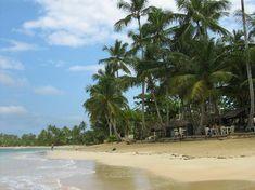 Playa Bonita, Las Terranas D.R.