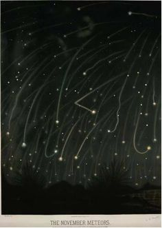 November Meteors plate by Trouvelot