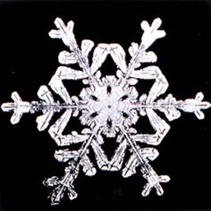 Print PDFs of real snowflakes to make patterns for cutting paper snowflakes.