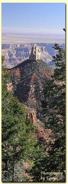 Grand Canyon North Rim, Riding the Ken Patrick Trail, AZ