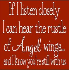 I wait & listen for the birds every day. It brings a smile to know u are by my side!