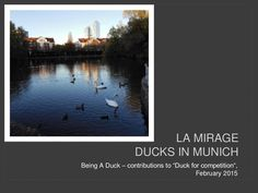 Duck for competition: your photos and images by A Being Blog via slideshare