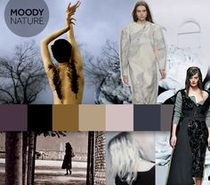 moody-nature-fall-colour-trends-2014-2015.jpg 768×679 pixels