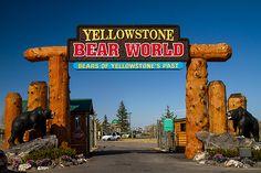 Yellowstone Bear World Drive -thru Wildlife Park Rexburh, ID.
