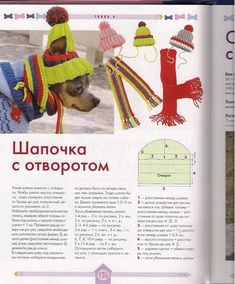 Small Dog Clothes, Pet Clothes, Loom Patterns, Sewing Patterns, Dog Clothes Patterns, Pet Boutique, Dog Pattern, Dog Sweaters, Dog Coats