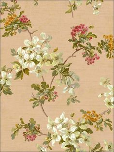dining room  wallpaperstogo.com WTG-128161 Fairwinds Studios Traditional Wallpaper