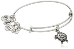 Alex and Ani Charity By Design Turtle Rafaelian Silver Ba…