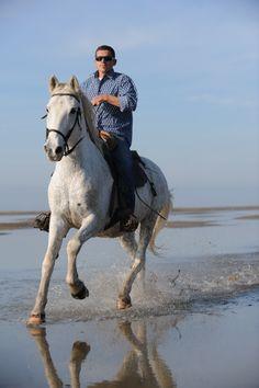 35 meilleures images du tableau Cheval Camargue au Grau du Roi ... 2aa7d214169