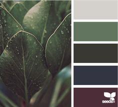 nature tones  color combination, color palettes, color scheme, color inspiration, visual communication.