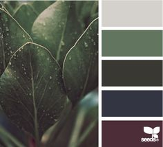 nature tones - i love these pigment tones. very masculine and very elemental.