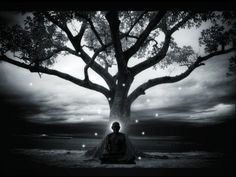 the buddha sat under the bodhi tree