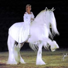 """His name is """"Illusion Crystal Clear of Ox Kill"""" aks """"Crys""""…he's an 18.2hh Shire Stallion…owned by Knight Haven Shires & Gypsy Horses… he loves to perform for crowds as the Rare Unicorn…but do they really exist..?"""