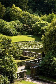 gorgeous garden