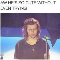 Harry Styles Memes, Harry Styles Baby, Harry Styles Imagines, Harry Styles Pictures, Harry Edward Styles, One Direction Harry, One Direction Humor, One Direction Pictures, Niall Horan