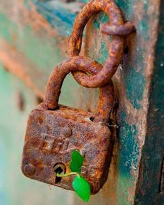 It's a reminder that below the abandoned, rusty, locked away, deep recesses within that have been long forgotten, there is always more to come. Rust Never Sleeps, Knobs And Knockers, Door Knobs, Door Handles, Peeling Paint, Rusty Metal, Foto Art, Belle Photo, Vintage Photos