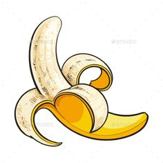 Buy Peeled Ripe Banana by Sabelskaya on GraphicRiver. One open, peeled ripe banana, sketch style vector illustration isolated on white background. Realistic hand drawing o. Realistic Drawings, Easy Drawings, Tattoo Drawings, Banana Sketch, Fashion Sketch Template, 30 Day Art Challenge, Sketch Style, Banana Art, Bananas