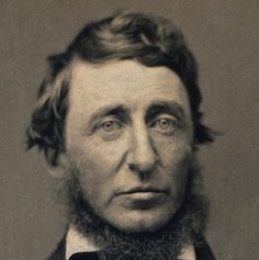 Henry David Thoreau Calls 'All the Light of November' an 'Afterglow' - http://www.newenglandhistoricalsociety.com/light-november-may-called-afterglow-wrote-thoreau/