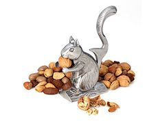 Nutty Squirrel Nut Cracker by RSVP International at Food Network Store