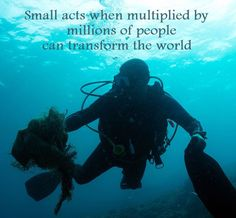 Small acts transform the world. What's your small act? Diving Against Debris? Share with us what you're doing to Protect our Ocean Planet - One Dive at a Time