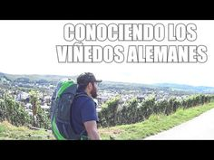 CONOCIENDO LOS VIÑEDOS EN ALEMANIA | VLOG MEXICANOS POR EL MUNDO - Vivir en Alemania