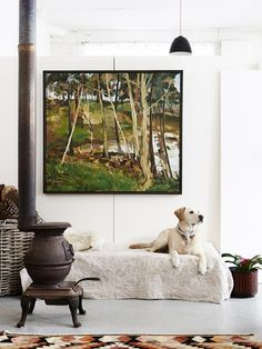 Love the rug! And he dog.   So cozy!