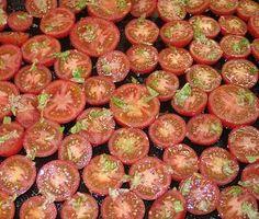 Suppe aus gerösteten Tomaten