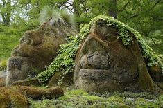 Norwegian Trolls in the Deep Forest of Norway - Do Trolls Really ...