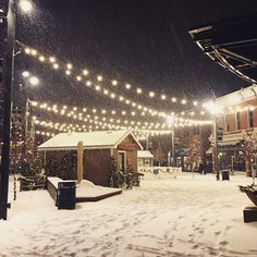 Christmastime in Old Town Fort Collins