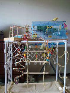 MoPa :: View topic - DIY Bird Toys/Recipes