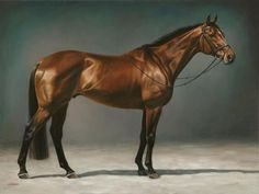 "Jaime Corum Equine Art ""Ravadon"" for Courtney and David Race Horse Breeds, Horse Artwork, Horse Portrait, Pencil Portrait, Equestrian Decor, Horse Silhouette, Thoroughbred Horse, Horse Drawings, Animal Paintings"