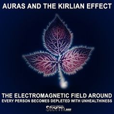 Auras and The Kirlian Effect | The Electromagnetic Field Around Every Person Becomes Depleted with Unhealthiness | Stillness in the Storm