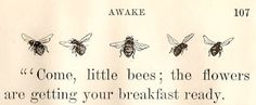 """""""Come, little bees; the flowers are getting your breakfast ready."""""""