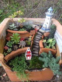 My new coastal succulent fairy garden complete with lighthouse and little row…