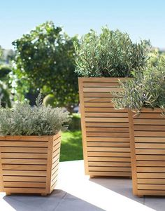 Teak Planters with plants on a patio, from Target - Modern Diy Wood Planters, Tall Planters, Tall Planter Boxes, Patio Planters, Privacy Planter, Concrete Planters, Diy Patio, Garden Projects, Garden Pots