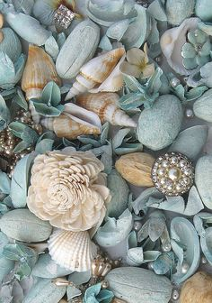 """One cannot collect all the beautiful shells on the beach."" Anne Morrow Lindbergh (with only a few exceptions, all ""shells"" belong to someone else) Coastal Style, Coastal Living, Coastal Decor, Coastal Colors, Rustic Decor, Cottages By The Sea, Beach Cottages, Flor Iphone Wallpaper, Palmiers"