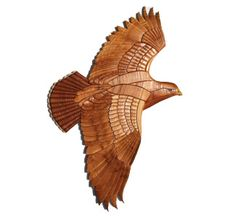 Red Tailed Hawk Project Pattern