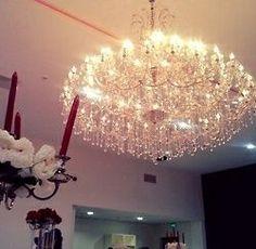 That amazing chandelier.