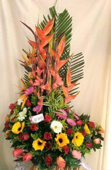 Productos – Floristeria la Maria Altar, Plants, Flower Vases, Ornaments, Modern Floral Arrangements, Floral Motif, Bouquets, Products, Plant