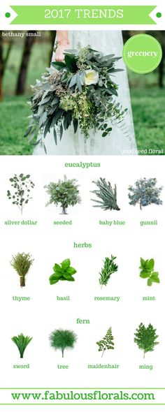 Keep up with the trends with this  2017 wedding bouquet suggestion chart. Use eucalyptus, babies breath and ferns to make for a modern, beautifully designed wedding.