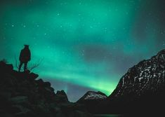 On our Northern Lights Tesla Experience in Tromso, we will take you into the arctic fjords in search of epic landscapes and of course, the northern lights. Pukka, Tromso, Arctic, Norway, Northern Lights, Landscape, Winter, Nature, Travel