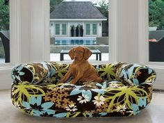 Comfort Your Dog with Dog Bed with Bolster : Cute Floral Dog Bed With Bolster Ideas